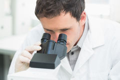 Scientific researcher using microscope in the laboratory. Close up of a male scientific researcher using microscope in the laboratory Stock Image