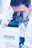 Scientific researcher using microscope in the laboratory. Close up of a male scientific researcher using microscope in the laboratory Stock Images