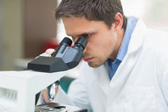 Scientific researcher using microscope in the laboratory. Close up of a male scientific researcher using microscope in the laboratory Stock Photos