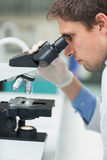 Scientific researcher using microscope in the laboratory Stock Photography