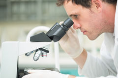 Scientific researcher using microscope in the laboratory. Side view Close up of a male scientific researcher using microscope in the laboratory Royalty Free Stock Images