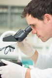 Scientific researcher using microscope in the laboratory. Side view of a male scientific researcher using microscope in the laboratory Stock Photo