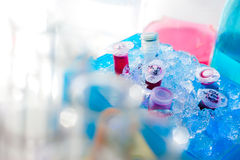 Scientific samples on ice Royalty Free Stock Image