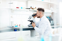 Scientific studies Royalty Free Stock Image