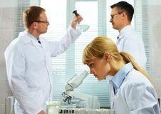 Scientific team Royalty Free Stock Photos
