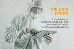 Scientifique à l'aide du comprimé pour obtenir au courant au sujet des diseas de fièvre jaune Photographie stock libre de droits