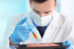 Scientifique avec l'échantillon de examen de viande de seringue dans le laboratoire image libre de droits