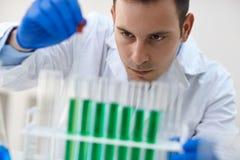 Scientifique combinant le liquide chimique utilisant une pipette dans l'essai images stock