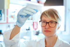 Scientifique dans le laboratoire Photo stock