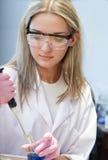 Scientifique dans le laboratoire chimique photo stock