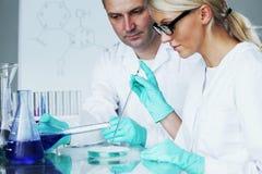 Scientifique de chimie Image libre de droits