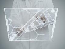 Scientifique de chimiste Photo libre de droits