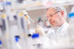 Scientifique de vie recherchant dans le laboratoire Images stock