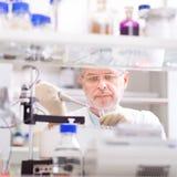 Scientifique de vie recherchant dans le laboratoire Photo stock
