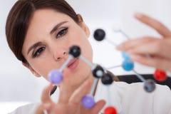 Scientifique regardant la structure moléculaire Images libres de droits