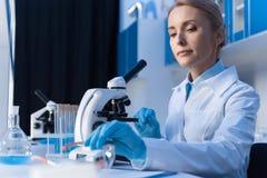 Scientifique focalisé à l'aide du microscope tout en travaillant avec des réactifs dans le laboratoire images stock