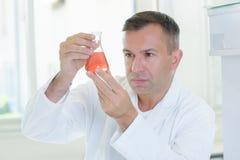 Scientifique inspectant le produit chimique de clarté photographie stock