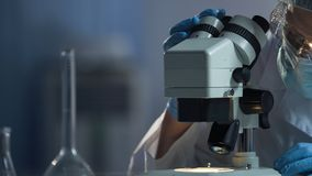 Scientifique médical préparant la surface du microscope pour le macro processus de recherche photos libres de droits