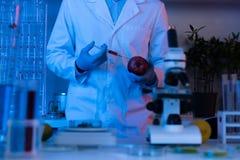 Scientifique pendant le travail au laboratoire biologique moderne images stock