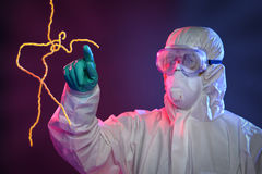 Scientifique Touching Ebola Virus Images libres de droits