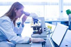 Scientifique travaillant avec un microscope dans le laboratoire photo stock