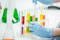 Scientifique Working In Laboratory photos stock