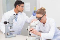 Scientifiques à l'aide du microscope Image stock