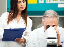 Scientifiques au travail dans un laboratoire Image stock