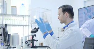 Scientifiques de recherches médicales regardant la souris de laboratoire dans une cage Laboratoire lumineux et moderne clips vidéos