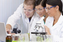 Scientifiques interraciaux dans le laboratoire avec l'ordinateur portatif Images libres de droits