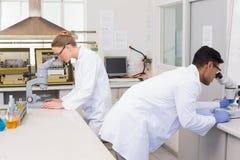 Scientifiques à l'aide du microscope Photographie stock libre de droits
