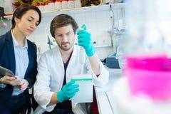 Scientifiques travaillant attentivement dans le laboratoire images stock
