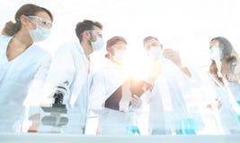 Scientifiques travaillant avec les tubes et le microscope à essai dans le laborat photos libres de droits
