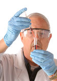 Scientis with blood. Research scientist with blood samples and culture dish for analysis royalty free stock photos