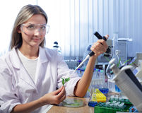Scientist. Beauty scientist in chemical laboratory Royalty Free Stock Photo