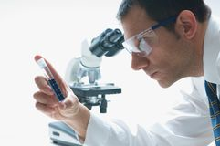 Scientist. A scientist looking through a microscope Royalty Free Stock Photography