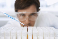 Scientist Adding Solution To Test Tubes. Young male scientist adding solution to test tubes in laboratory Royalty Free Stock Image