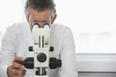 Scientist Adjusting Microscope Royalty Free Stock Photos