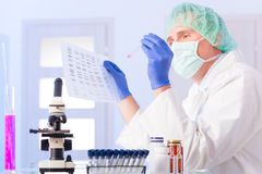 Scientist analysing DNA sequence in the lab Stock Photo