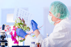 Scientist analysing DNA sequence in the lab Royalty Free Stock Photo