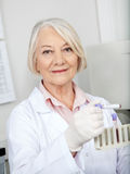 Scientist Analyzing Blood Sample In Laboratory Stock Image