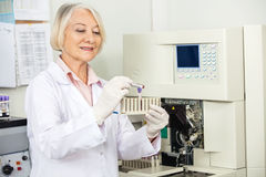 Scientist Analyzing Blood Sample In Laboratory Royalty Free Stock Photo