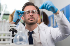 Scientist Analyzing Examining Sample Of Plant In Test Tube Workin In Genetics Laboratory. Man Researcher Study Experiment Result Stock Photos