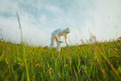 Scientist analyzing green plants on summer field Royalty Free Stock Photo
