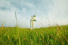 Scientist analyzing green plants on summer field Stock Image