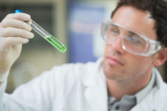 Scientist analyzing green solution in test tube at laboratory Stock Photo
