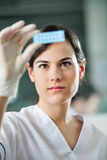 Scientist Analyzing Microscope Slide Stock Photos