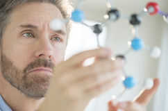 Scientist Analyzing Molecular Structure Royalty Free Stock Images