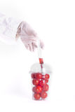 Scientist applying injection to cherry tomato Royalty Free Stock Photography