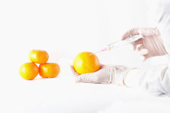 Scientist applying injection to fruit Royalty Free Stock Photo